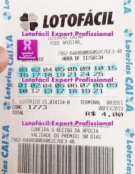 lotofacil expert profissional downlowad